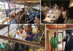 השלוחים החדשים בקניה יצאו לחליבה